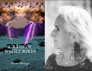 Deena Metzger - Rain of the Night Birds
