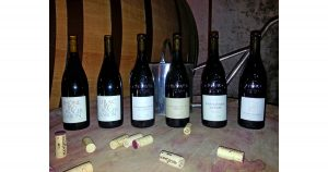 Wine Tasting - Cellars of Roger Sabon