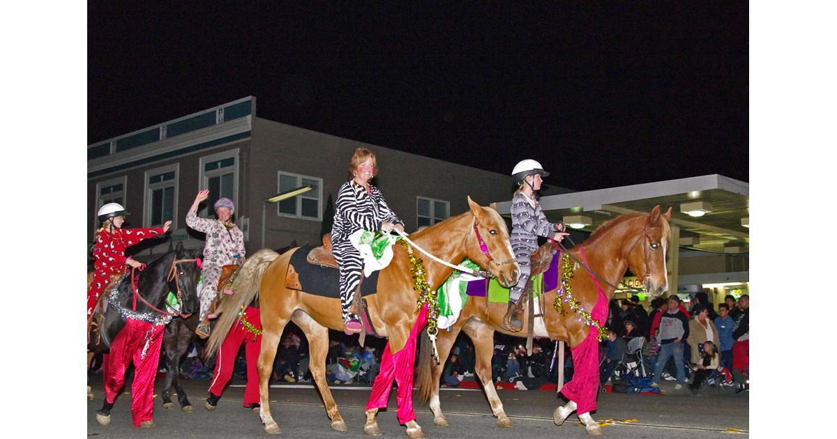 Lights on Parade - Lighted Horses
