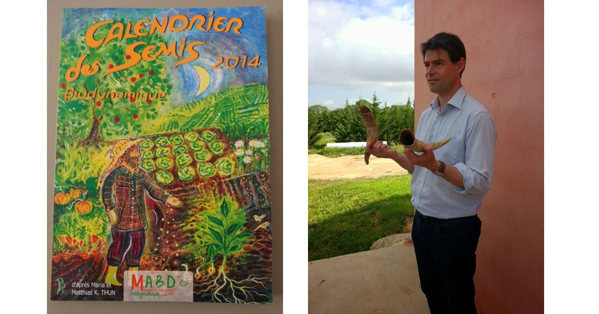 The Biodynamic 'Bible'. The Sowing Calendar and What's with the horns at Domaine Cigalus in the Languedoc