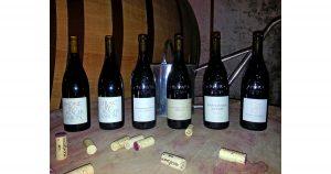 Wine Tasting - Cellars of Roger Sabon
