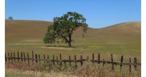 San Benito Ranch Country
