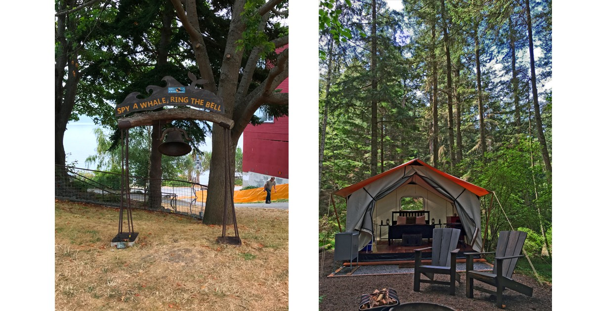Spy a Whale, Ring a Bell and Leanto Moran State Park Glamping