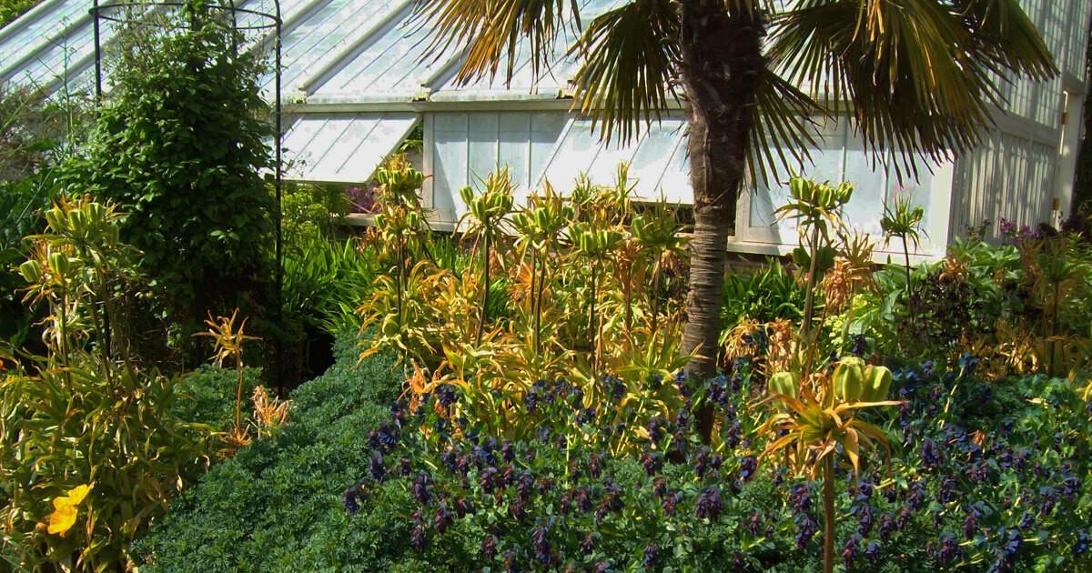 Walled Garden, Norfolk Tours