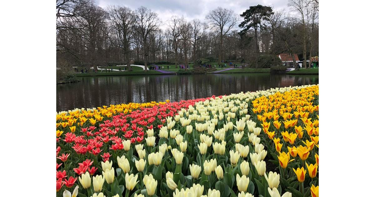 Keukenhof Gardens is a delight for the senses.
