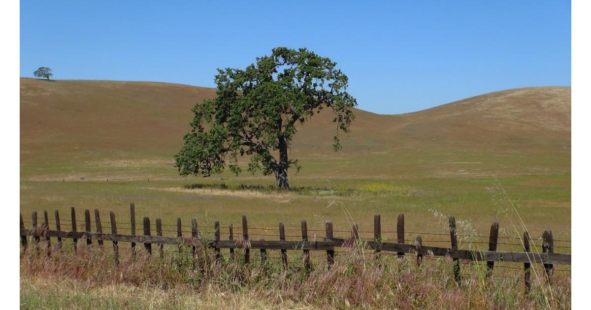 San Benito Ranch Country.jpg