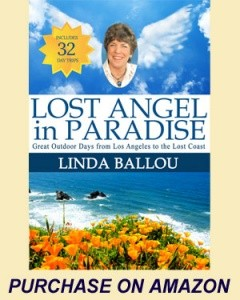 Lost Angel in Paradise - Linda Ballou
