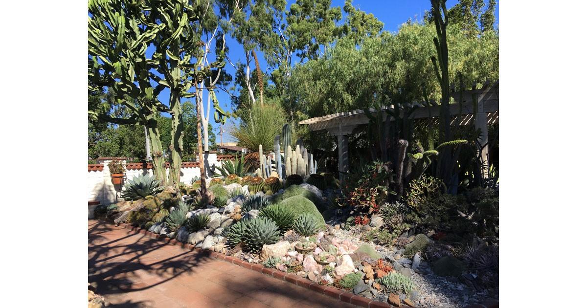 Cactus-and-Succulent-Garden.jpg
