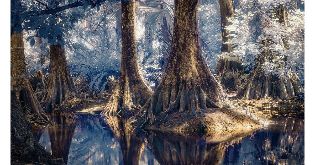 Carl Stoveland - Riverbend Infrared