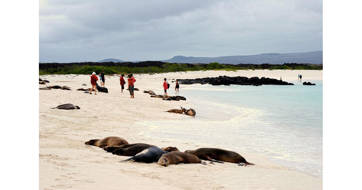 Cerro Brujo Galapagos©Debbra Dunning Brouillette