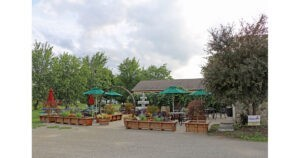Courtyard Winery in Pennsylvania