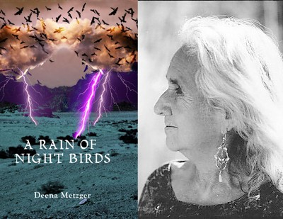 Deena Metzger: A Rain of Night Birds