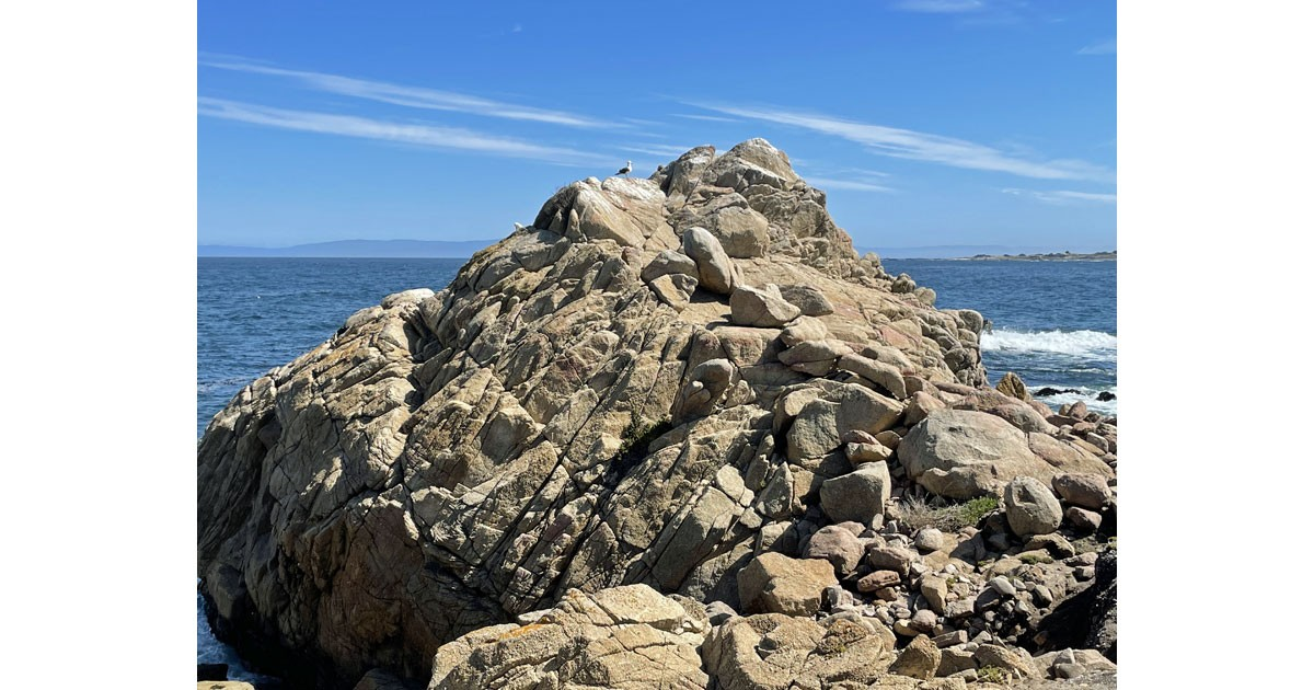Formidable rock is a perfect perch for this bird.