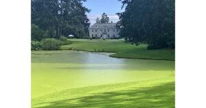 Bloedel Reserve - Mid Pond