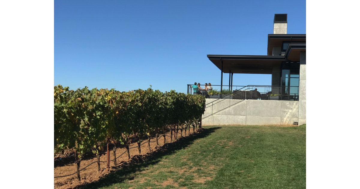 Ponzi Vineyards and Tasting