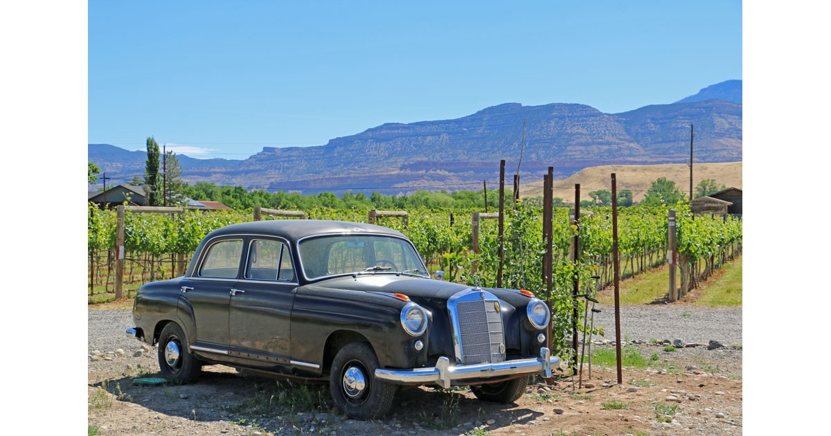 Restoration Winery
