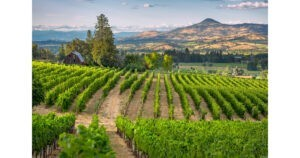 Rogue Valley View © Travel Medford