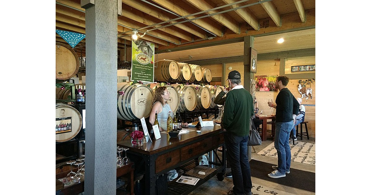 Spoiled Dog Winery , Whidbey Island  - Cozy, friendly with award winning wines