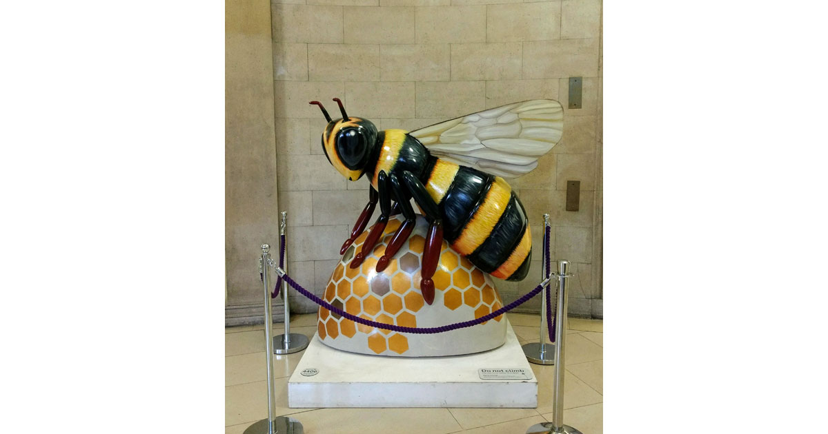 The Bee-the 'industrious' symbol of Manchester - Main Library - by Hilarie Larson