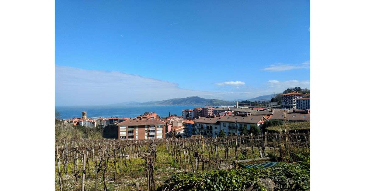 The Txakoli vineyards of Getaria overlook the town and the blue waters of the Bay of Biscay