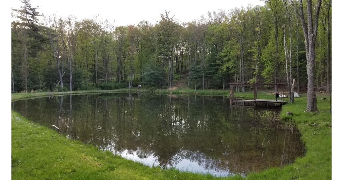 Tranquil Lake on property. Photo: Mary Farah
