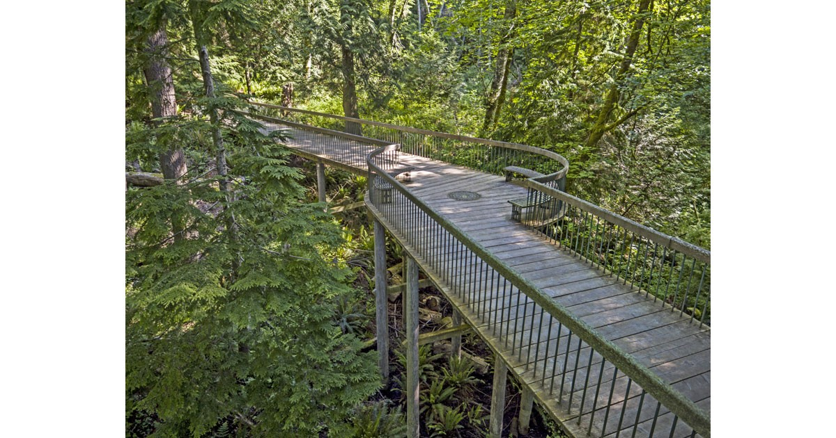 Trestle Bridge courtesy of Bloedel Reserve