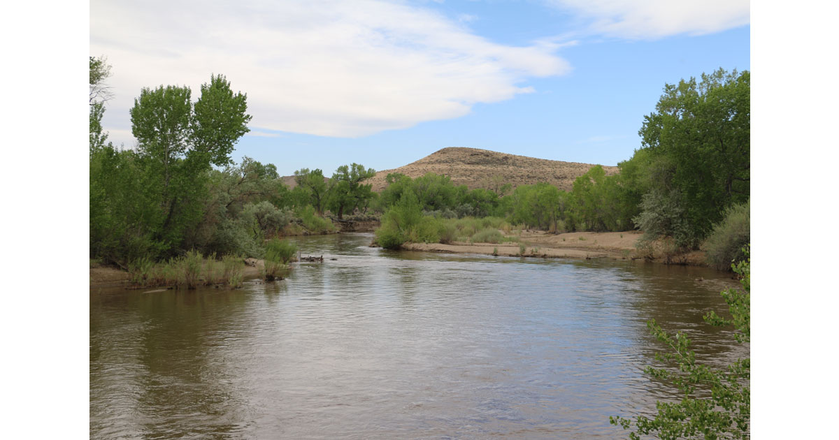 Walker River, Yerington