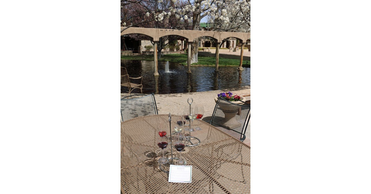 Wine Tasting with a Fountain View