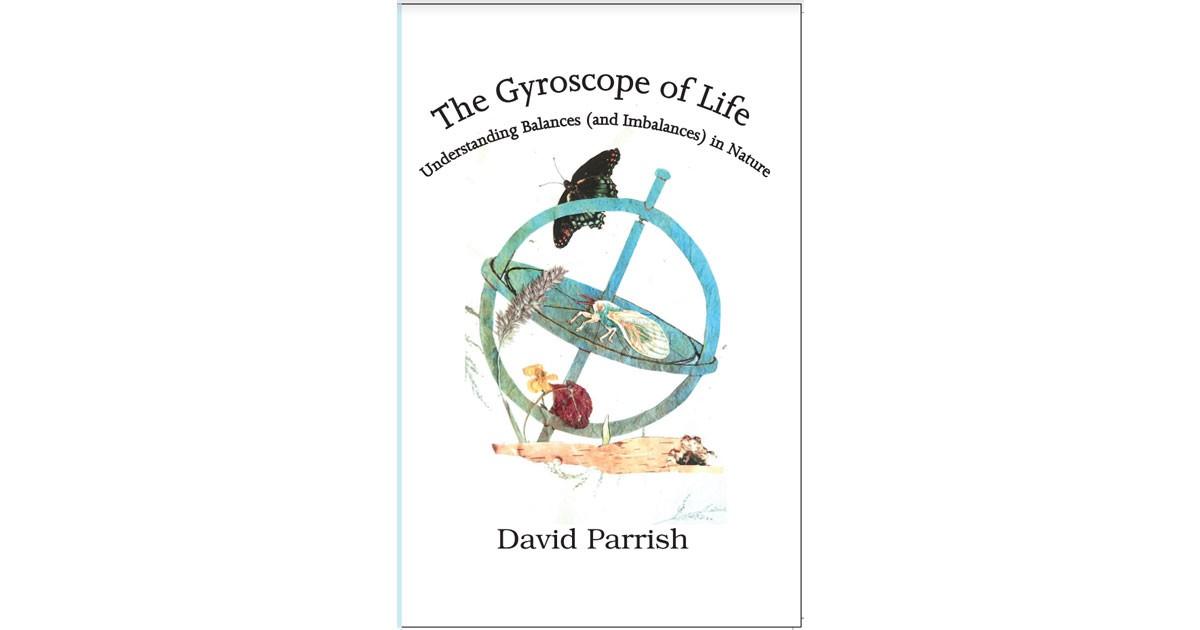 gyroscopebook.jpg