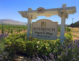 Taste the Flavors of Santa Maria Valley