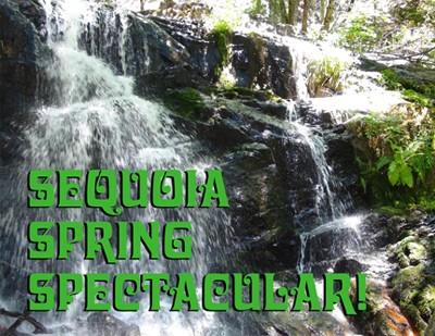 Sequoia Spring Spectacular 2017!