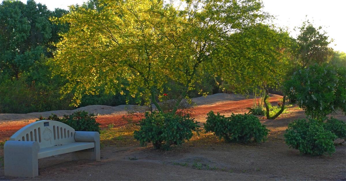 A Garden Walk in West Wetlands Park